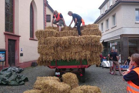 Oberurseler-Seifenkistenrennen-2017-Macho-009